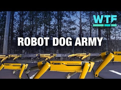 Boston Dynamics' four-legged Spot robots hot off the production line! | What the Future