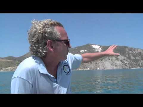 Rencontre avec les tortues couannes de Zakynthos - Tara Méditerranée 2014