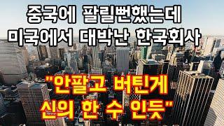 """중국에 팔릴뻔했는데 미국에서 대박나버린 한국회사 """"안팔고 버틴게 적중"""""""""""