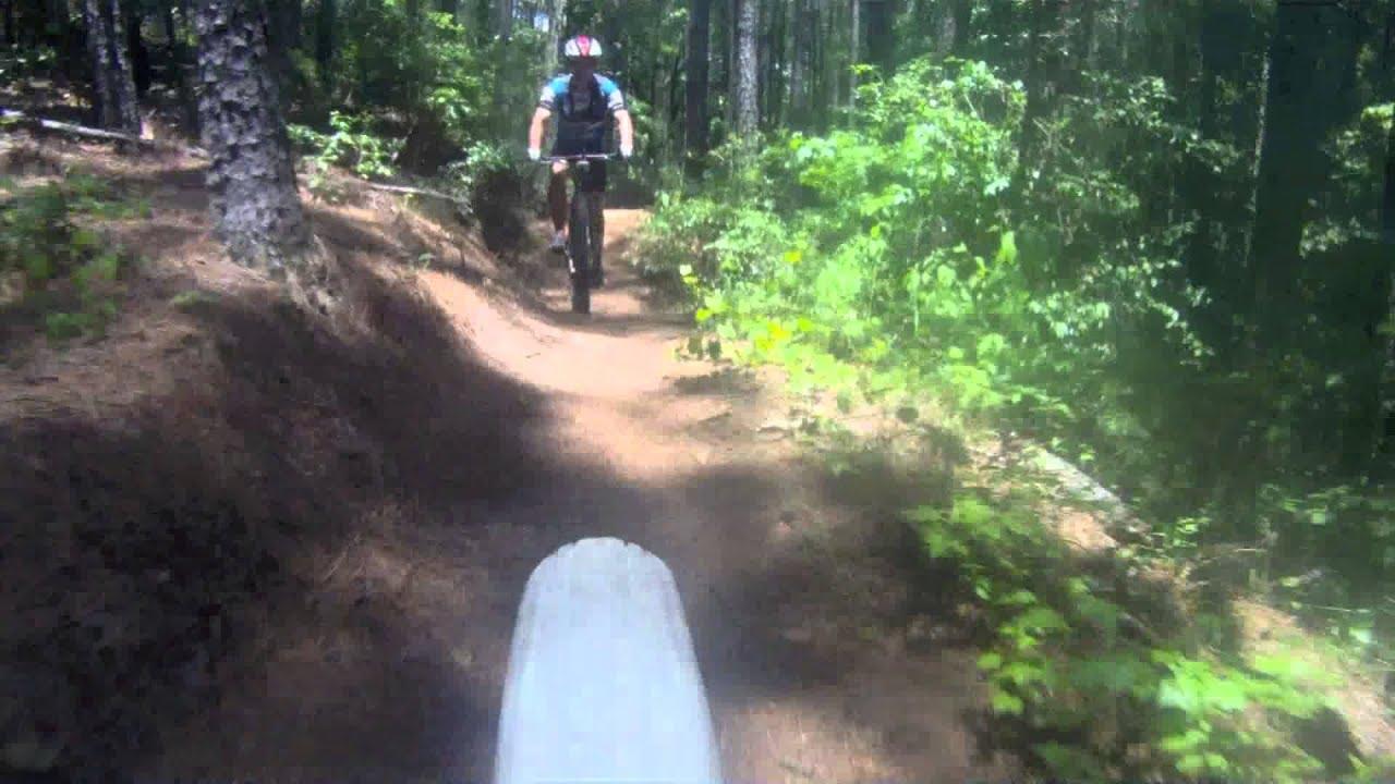 Affordabike Boys Shred The Brown Wave Fats Mountain Bike Charleston