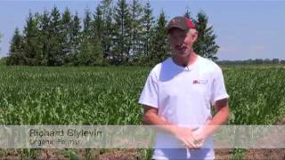 Organic vs Conventional Farming