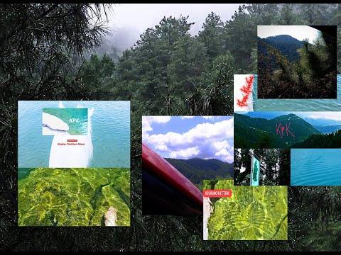 Khanaspur - Ayubia Route @ Ayubia/Ayub Khan National Park ( Himalyan grona - Galiyat KPK ) !! ^___^