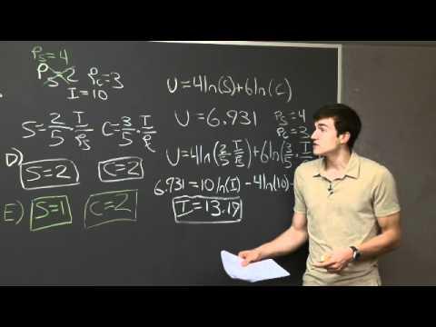 Problem Set 3, Problem #5 | MIT 14.01SC Principles of Microeconomics