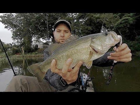 2lb Bass Caught On Newton Lake, NJ