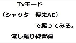 【Canon】 Tvモード(シャッター優先AE)で流し撮り練習 【PowerShot G7X】