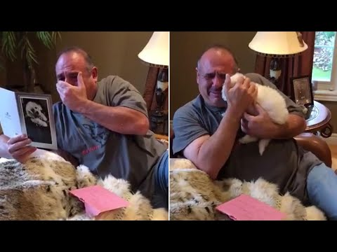 Man Sobs When His Family Surprises Him With New Puppy