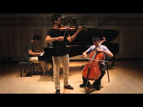 Secrets One Republic Instrumental cover - The Zion Trio