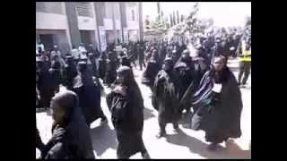Ashura Procession In Nigeria