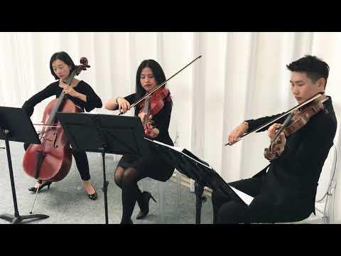 Dallas Asian String Trio