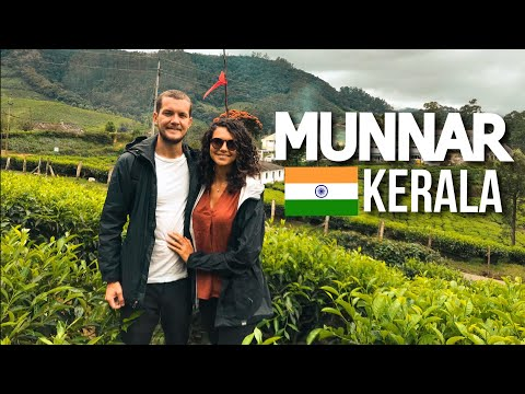 BEST OF KERALA 🇮🇳 MUNNAR TOUR (INDIA)
