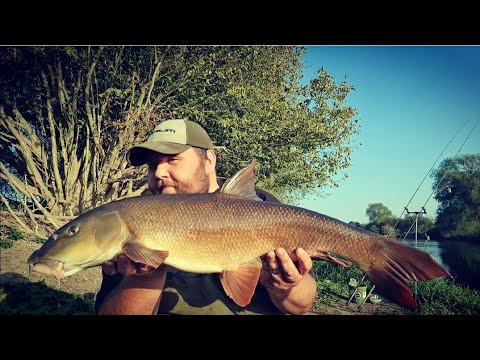 Barbel Fishing On The River Severn - Manic Session!!