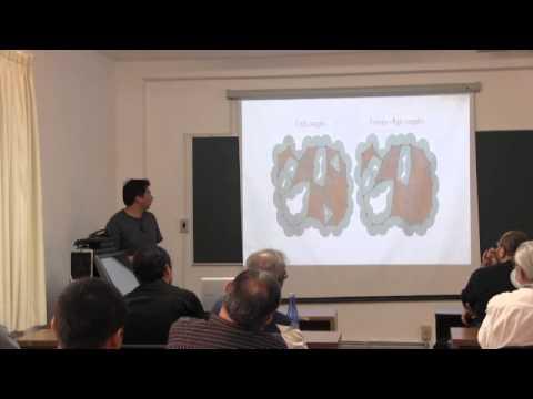 """Conferencia """"TDA y redes de sensores"""", José Hermenegildo Ramírez"""
