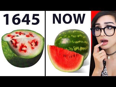 Maddox - What Your Food Used To Actually Look Like!