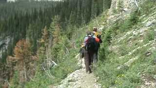 Emerald Triangle in Yoho NP 2009