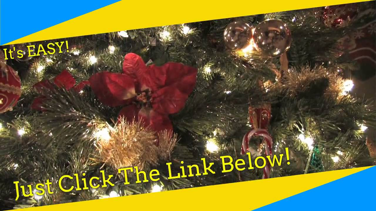Irish Christmas trees Dublin - YouTube