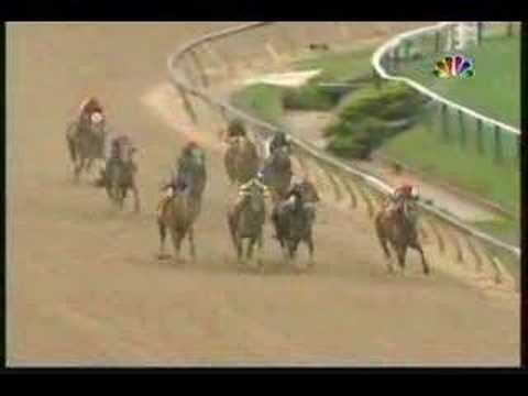 Preakness Stakes (2007)