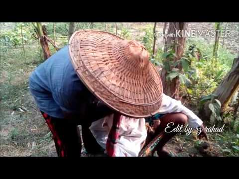 amaro-kola-bagane-bangla-funny-video-song