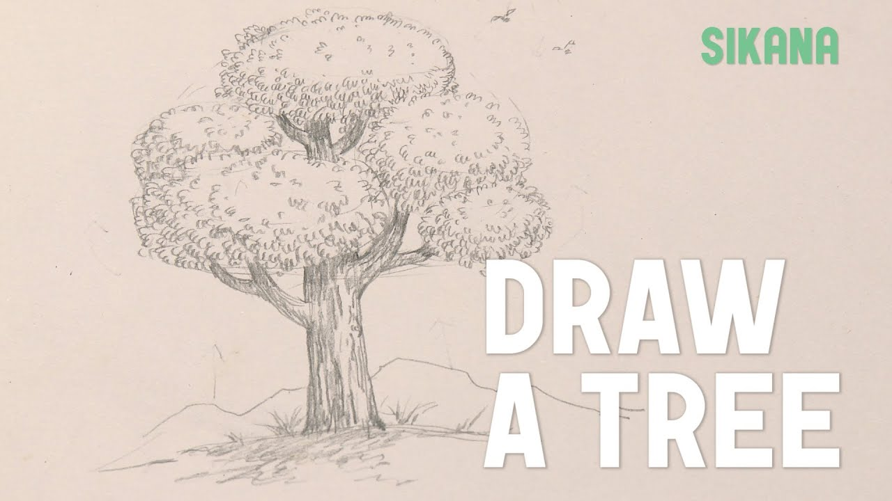 draw a tree youtube. Black Bedroom Furniture Sets. Home Design Ideas