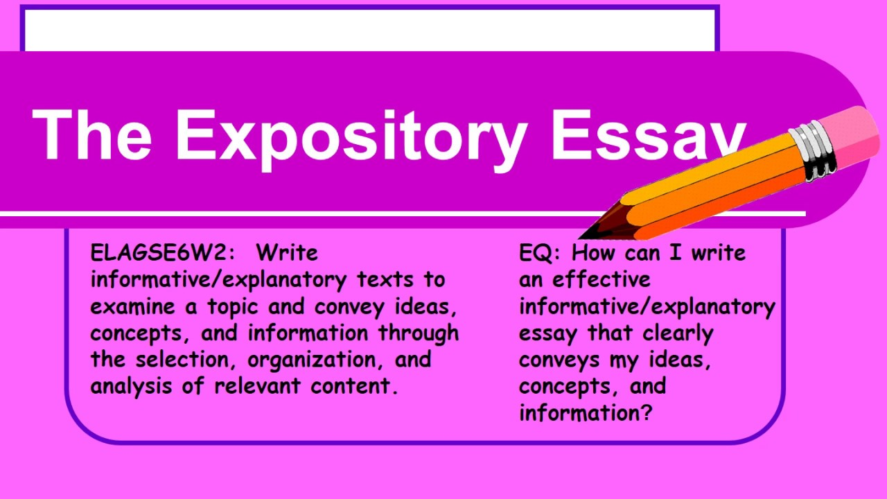 essay for successful student