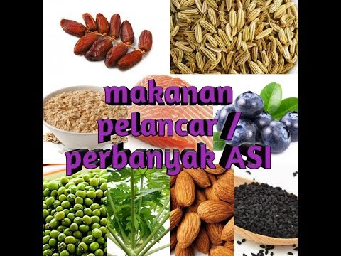 Tips # 7. 20 Jenis Makanan Pelancar / Perbanyak ASI