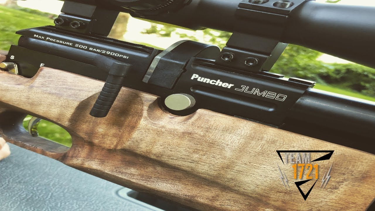 Plinking with the Kral Puncher Jumbo