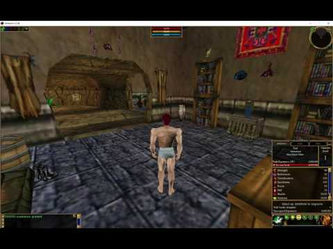Asheron's Call: The Emulator Is Happening