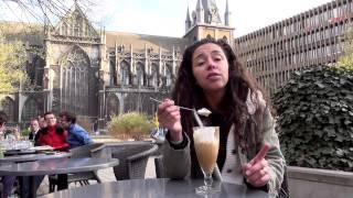 LEILA GHANDI EN BELGIQUE - Le film