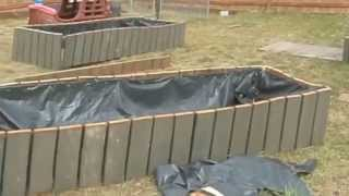 Free Making Raised Garden Beds Salvaged Cedar Deck Board tomatoes carrots Onions dirt sand