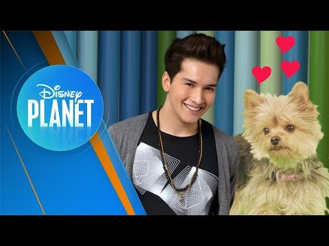 Jandino Hace Wow Wow   Disney Planet News #29