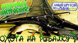 Охота на рыбалку Случаи на рыбалке Рыбаки приколы 2020 Девушки на рыбалке Смешная рыбалка