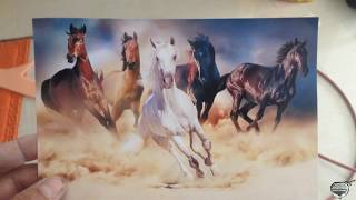 DIBUJO DE CABALLOS / HORSE DRAWING