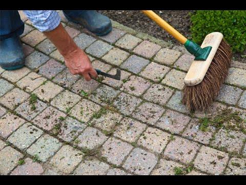 Voici une astuce pour radiquer les mauvaises herbes youtube for Nettoyer des paves autobloquants