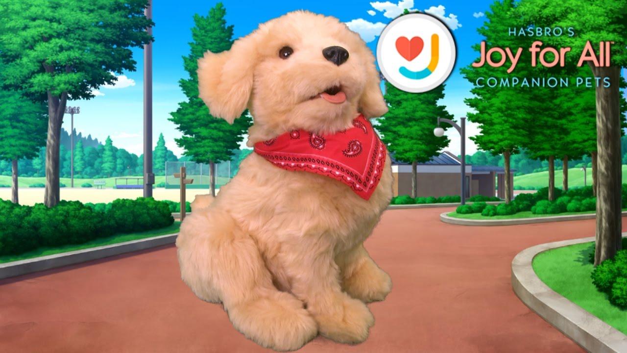 hasbro puppy