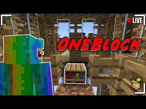 🔴 LIVE ONEBLOCK SKYBLOCK ( changement du warp, farm... ) #Oneblock #live🔴