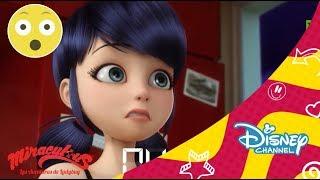 Las aventuras de Ladybug:  Nuevos episodios | Disney Channel Oficial