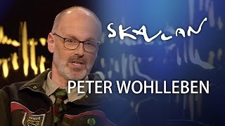 """The Hidden Life of Trees"" Peter Wohlleben Interview"