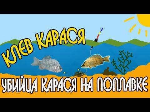 Рыбацкая усадьба - озеро для рыбалки вблизи Алматы