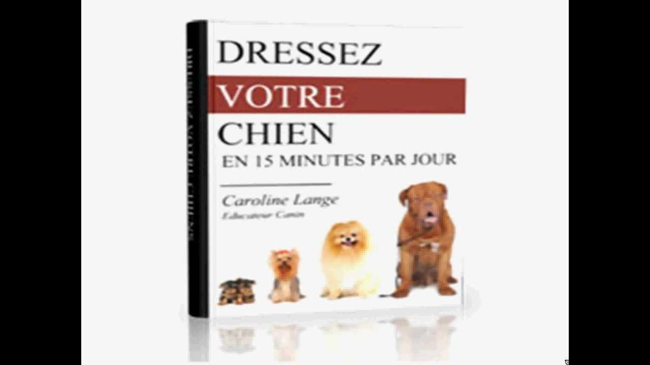Le meilleur livre PDF pour le dressage de votre chien