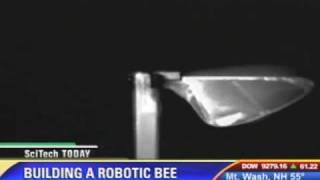 NSF awards Harvard $10 million for robot bees video