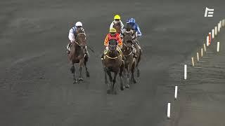 Vidéo de la course PMU PRIX GUILLAUME DE BELLAIGUE