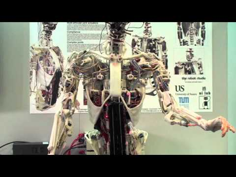 video: a robot with a human skeleton | popular science, Skeleton