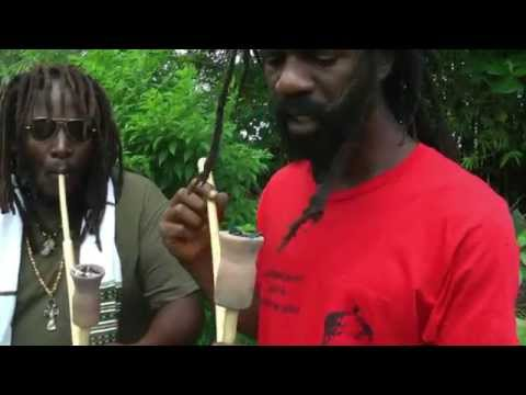 Jamaica 2014 Best Vaporizer EVER!!!
