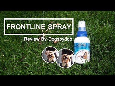 Review Frontline Spray สเปรย์กำจัดเห็บหมัดหมา-แมว