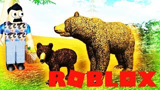 GRIZZLY BEAR+ CUB UPDATE RANDOM GAME SLOT ROBLOX (Role-playing game, Child friendly games for kids )