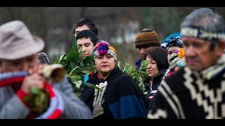 Il popolo dei Mapuche è libero