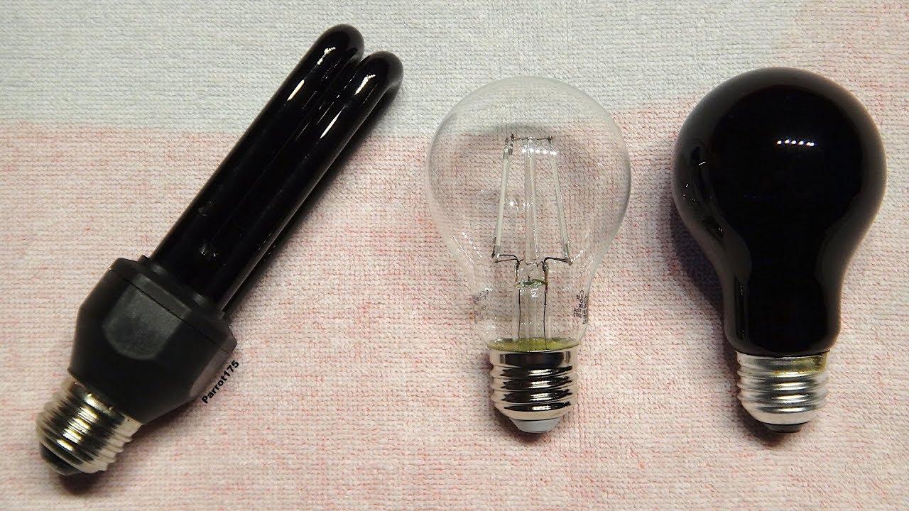 Download LED vs Incandescent vs Fluorescent Black Light 2018