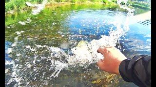 Настоящий Летний Сплав на Лодке по Дикой Реке Рыбалка на Щуку