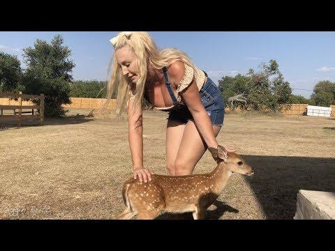 Barbie porn videos spankbang