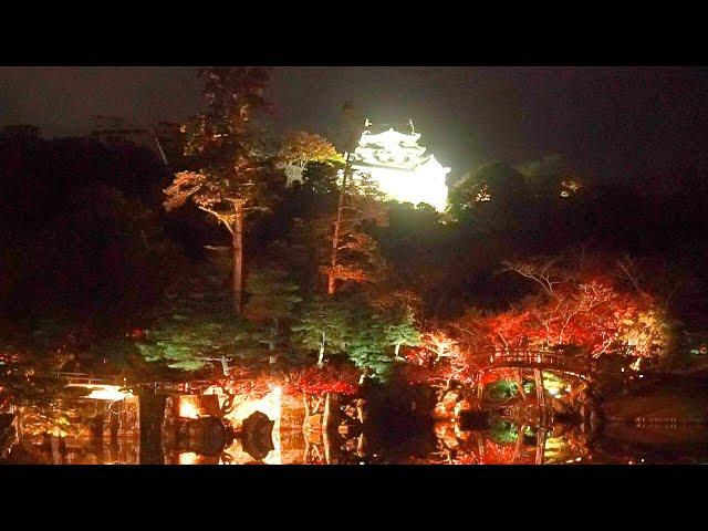 彦根・玄宮園 錦秋の庭園、暗闇に浮かぶ天守
