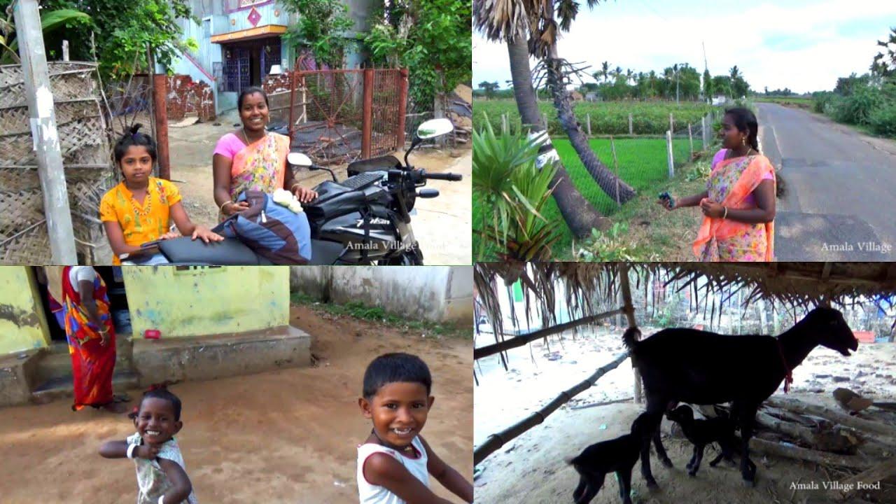 அம்மா ஊருக்கு கிளம்பியாச்சு🤗 | ஆதிச்சபுரம் | Village Vlog | Amala Village Food